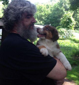 David-pup